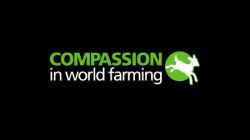 Compassion at world farming